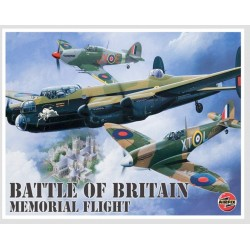 Plaque métal avion Battle of Britain 30 cm x 20 cm